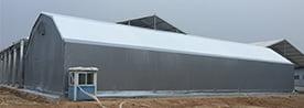 Steel Structure Industrial Tent